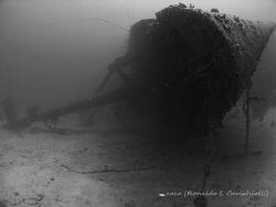 Hilma Hooker -Bonaire by Ronaldo Cavichiolli 